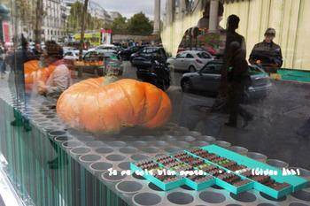 かぼちゃとショコラ.jpg