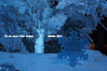 クリスマス2015(6).jpg