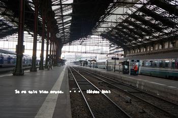 パリリヨン駅(2).jpg