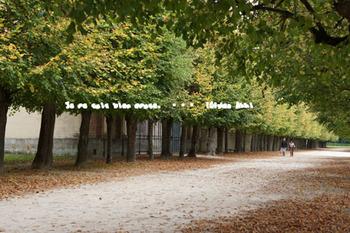 フォンテーヌブロー宮殿(81).jpg