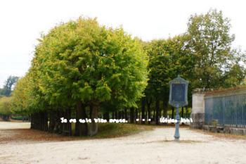 フォンテーヌブロー宮殿(85).jpg