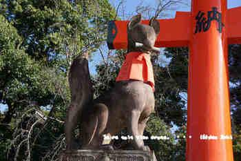 京都旅2016(125).jpg