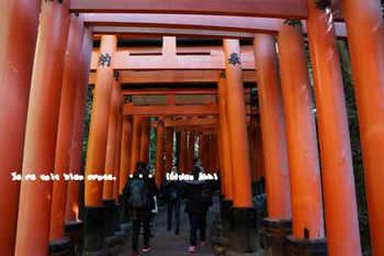 京都旅2016(134).jpg