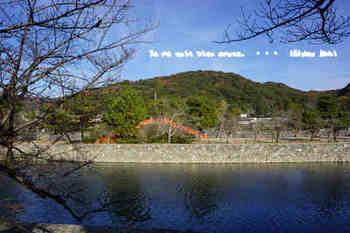 京都旅2016(156).jpg