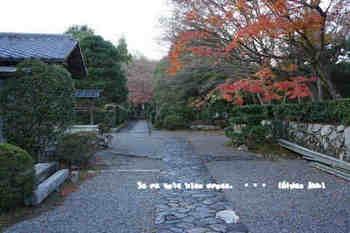 京都旅2016(251).jpg