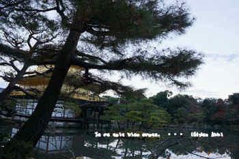 京都旅2016(42).jpg