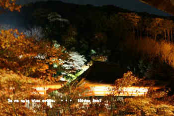 京都旅2016(68).jpg