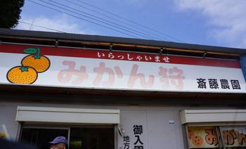 伊豆へ(22).jpg