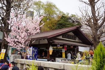 千代田桜まつり(39).jpg