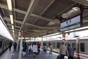 鎌倉の桜2016(1).jpg