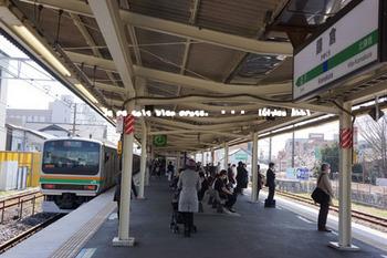 鎌倉の桜(1).jpg