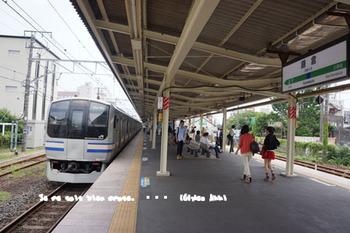 鎌倉紫陽花2014(1).jpg