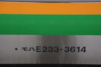 E233系3000番台(6).jpg