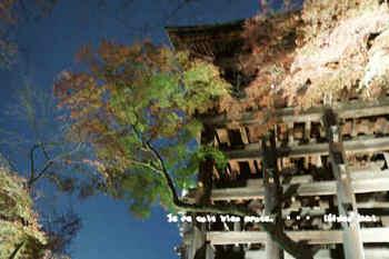 京都旅2016(10).jpg