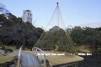 小石川後楽園(3).jpg