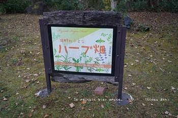 温泉旅行(52).jpg