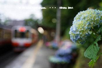 箱根旅2017(48).jpg