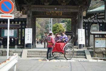 鎌倉の桜2018(4).jpg
