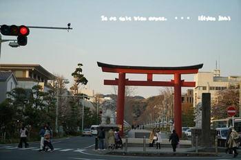 鎌倉桜2017(44).jpg