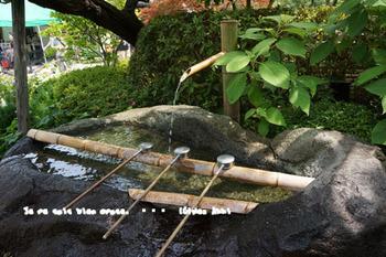 鎌倉紫陽花2014(7).jpg