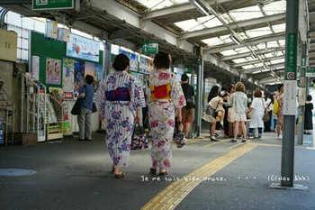 鎌倉紫陽花2019(3).jpg