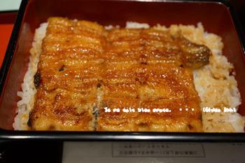 鰻2016(5).jpg